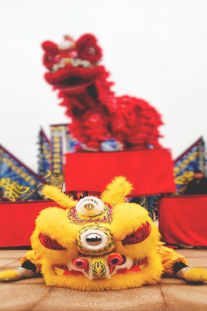 一等奖 2018级书法专业 刘光川《己亥戏狮》