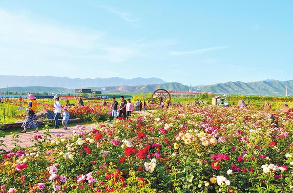 """河南省构建""""一带一核三山五区""""文化旅游发展布局"""